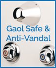 Gaol Safe & Anti Vandal